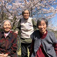 近所の公園で桜のお花見♪