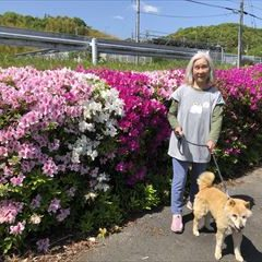 看板犬リリィーとお散歩も楽しいですよ♪