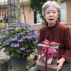 ホームの鉢植えのあじさいが満開です!誕生日プレゼントを手に笑顔♪