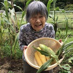 トウモロコシも立派に育ちました♪